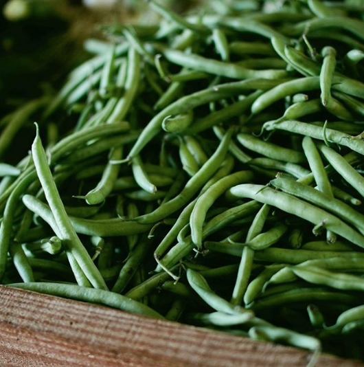 close-up of fresh green beans