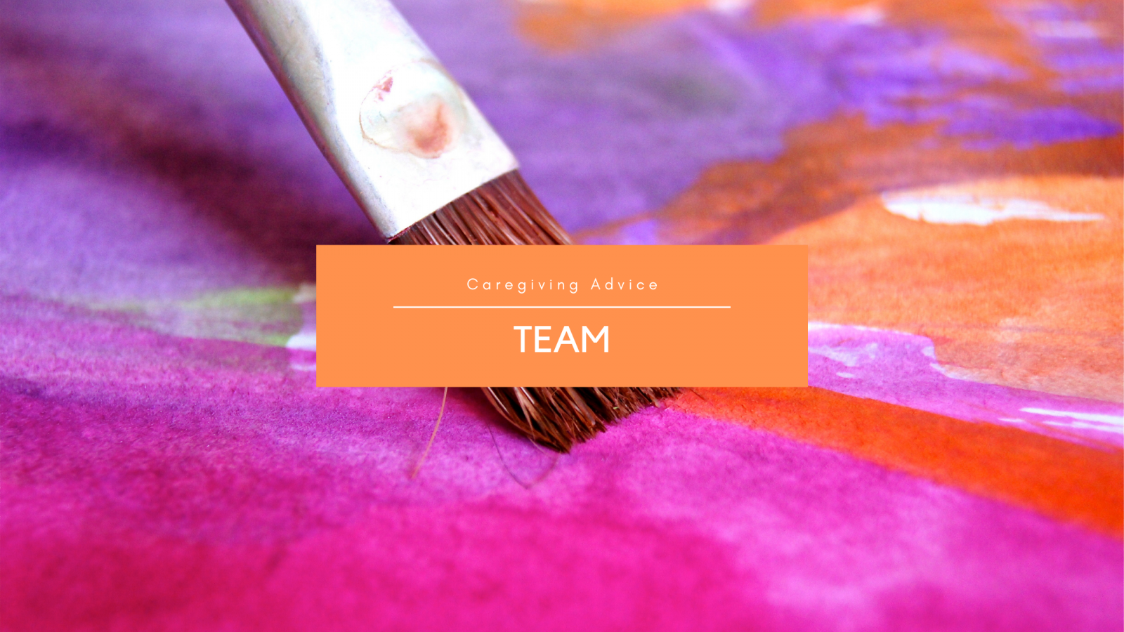 Blog Categories Team