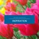 Blog Categories Inspiration